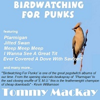 Birdwatching For Punks